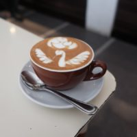 cappuccino_swans